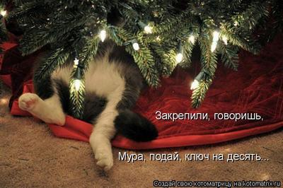 http://s7.uploads.ru/05fF9.jpg