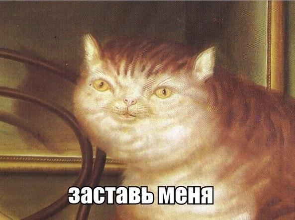 http://s7.uploads.ru/07qO6.jpg