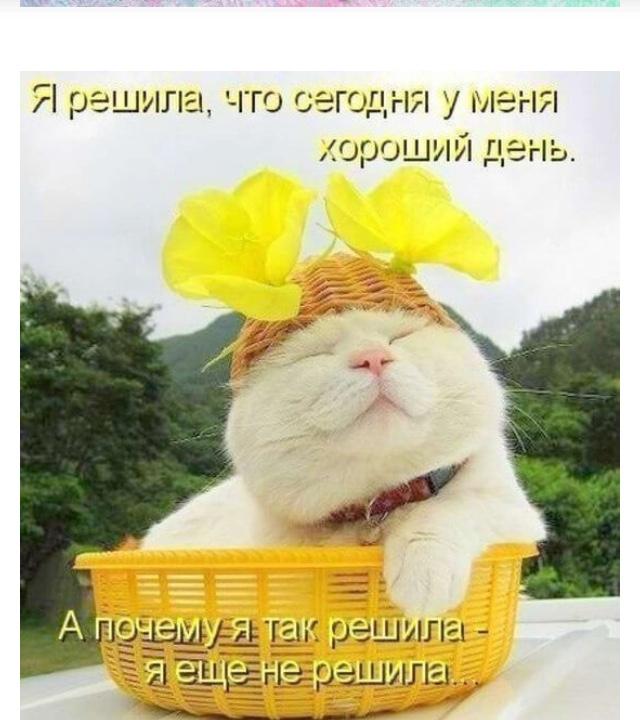 http://s7.uploads.ru/1lvCJ.jpg