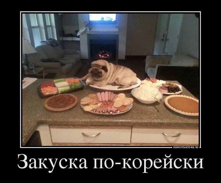 http://s7.uploads.ru/29nVi.jpg