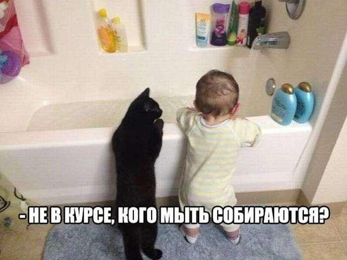 http://s7.uploads.ru/2dF0G.jpg