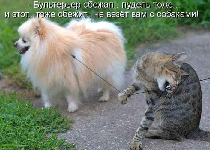 http://s7.uploads.ru/2oRY5.jpg