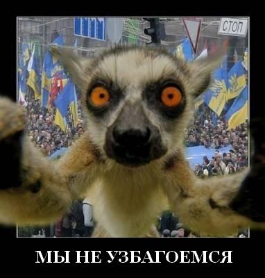 http://s7.uploads.ru/3NQSF.jpg