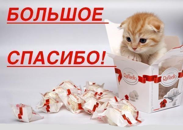 http://s7.uploads.ru/3U4lY.jpg