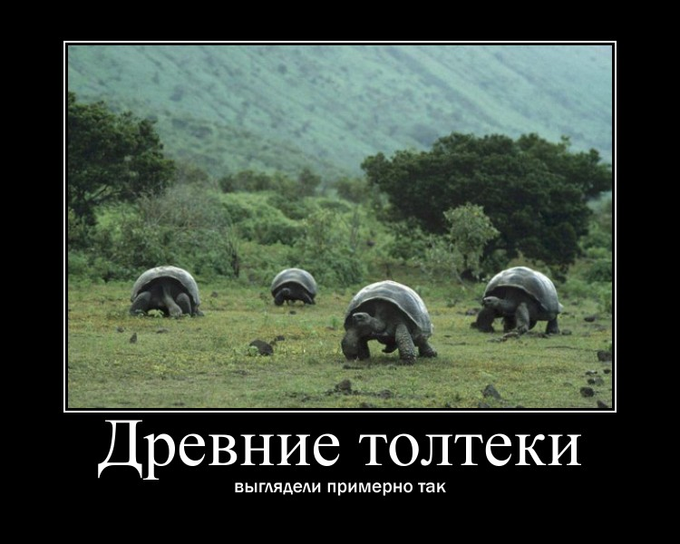 http://s7.uploads.ru/3Xbmq.jpg