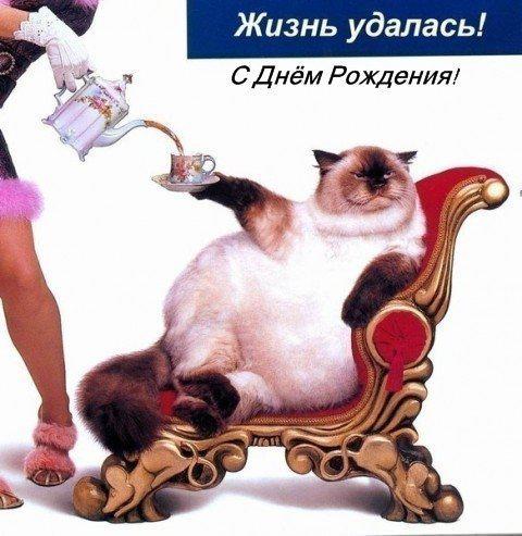 http://s7.uploads.ru/3zoZg.jpg