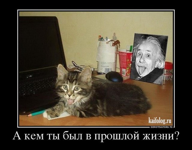 http://s7.uploads.ru/4c1ed.jpg