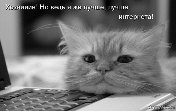 http://s7.uploads.ru/5GfAq.jpg