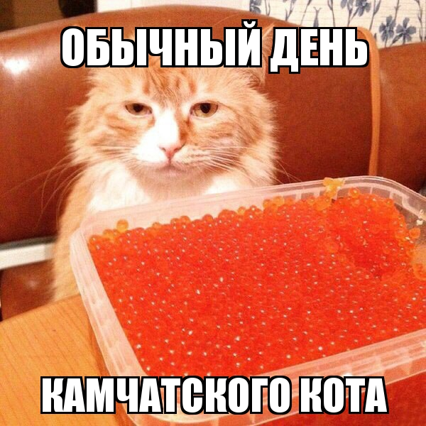 http://s7.uploads.ru/5VlA1.jpg