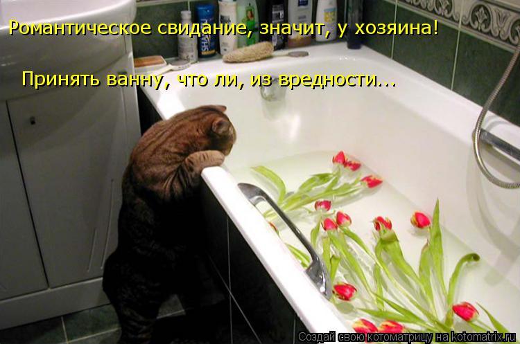 http://s7.uploads.ru/5kVdN.jpg