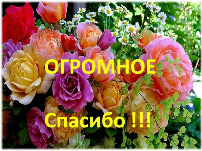 http://s7.uploads.ru/61l5c.jpg