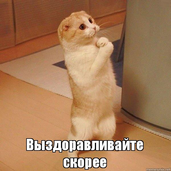 http://s7.uploads.ru/6C8qQ.jpg