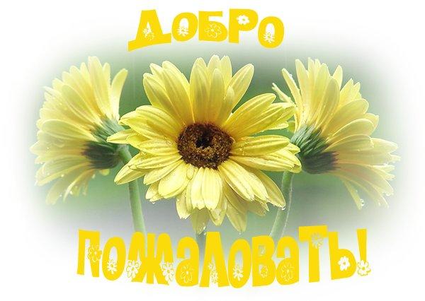 http://s7.uploads.ru/6G7qY.jpg