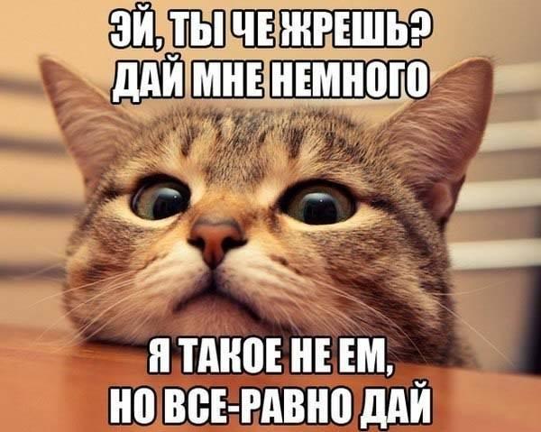 http://s7.uploads.ru/70xwk.jpg