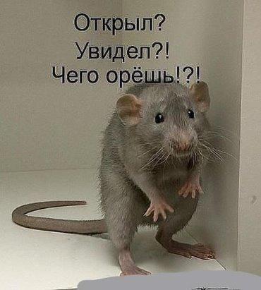 http://s7.uploads.ru/75Ui3.jpg