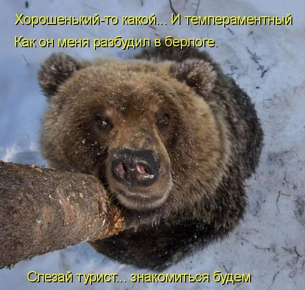 http://s7.uploads.ru/7m8RE.jpg