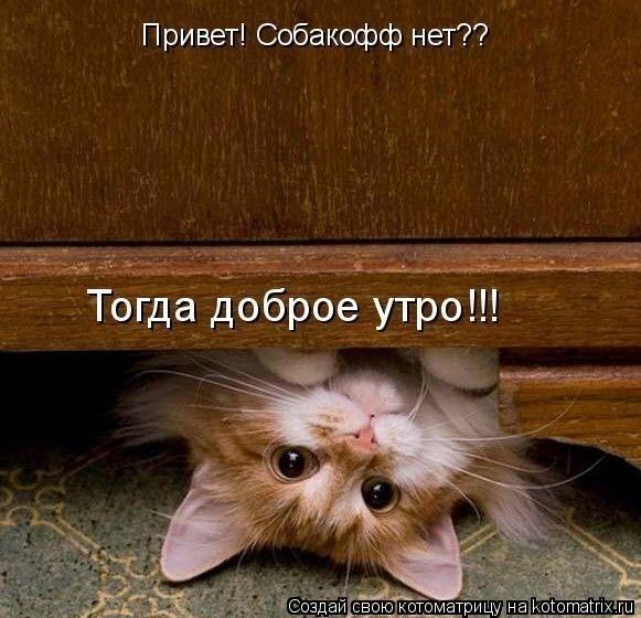 http://s7.uploads.ru/830UP.jpg