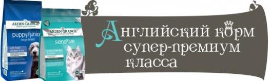 http://s7.uploads.ru/85N6Q.jpg