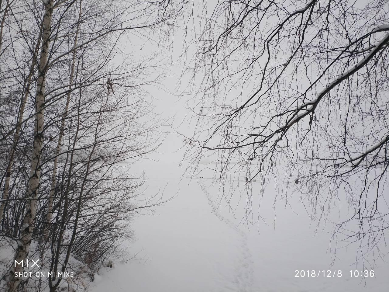 http://s7.uploads.ru/950cI.jpg