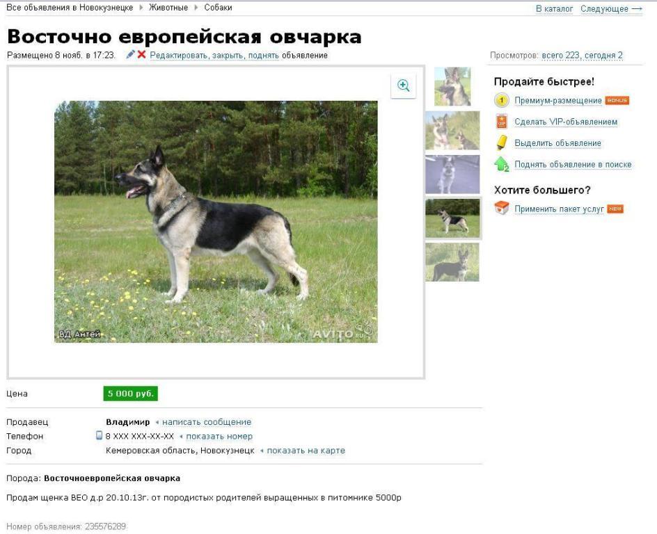 http://s7.uploads.ru/98sEi.jpg