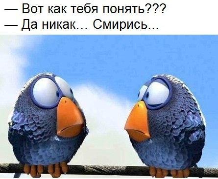 http://s7.uploads.ru/9NklM.jpg