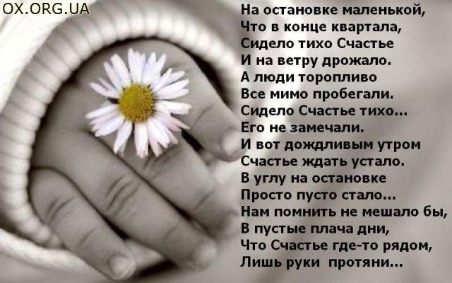 http://s7.uploads.ru/AMw6G.jpg