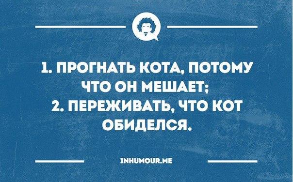http://s7.uploads.ru/AkweT.jpg