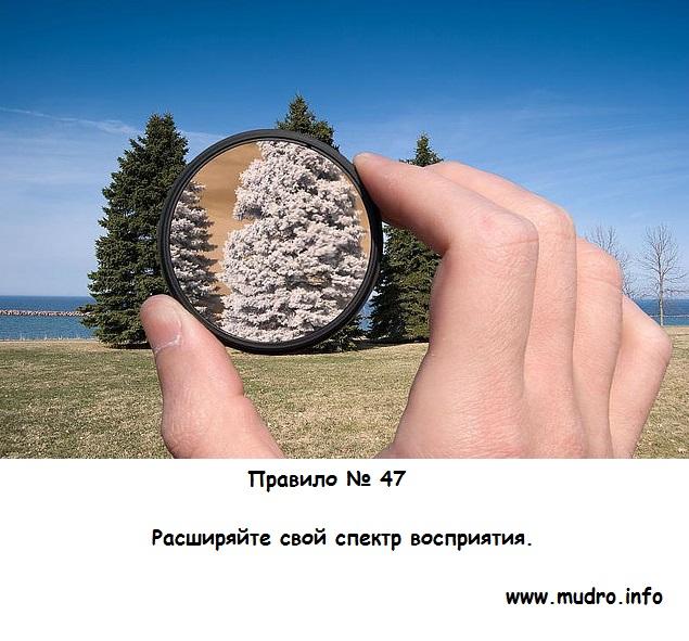 http://s7.uploads.ru/AmtyX.jpg