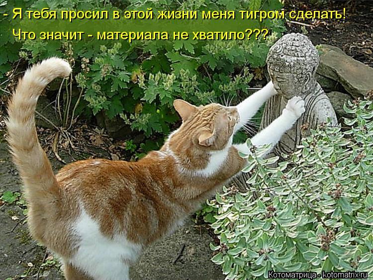 http://s7.uploads.ru/Aw2dH.jpg