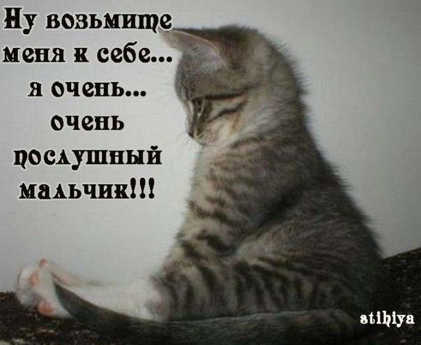 http://s7.uploads.ru/B97UK.jpg