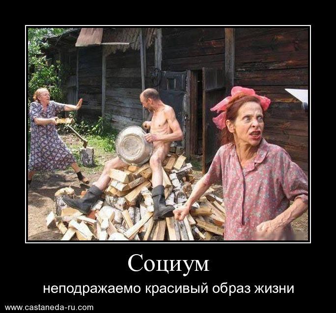http://s7.uploads.ru/BRF6p.jpg