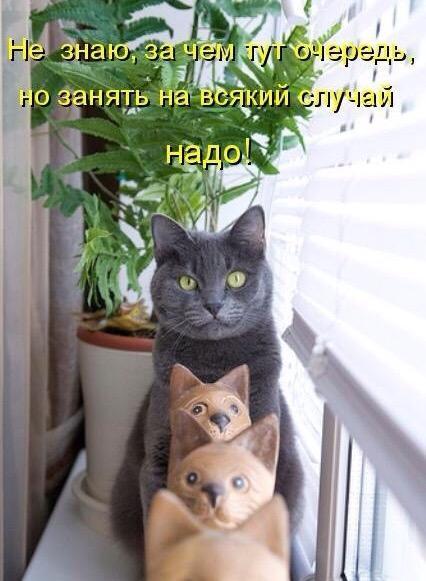 http://s7.uploads.ru/Br8ht.jpg