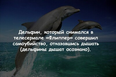 http://s7.uploads.ru/BxwVe.jpg