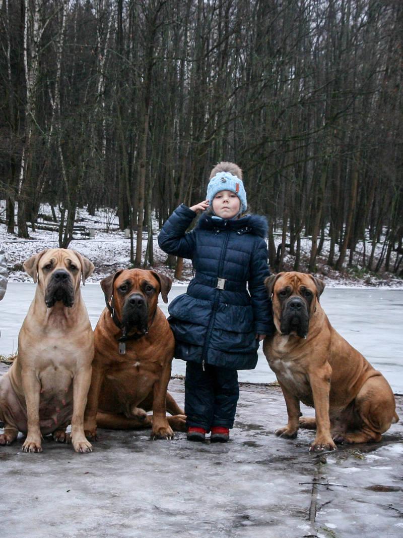 http://s7.uploads.ru/CGXka.jpg