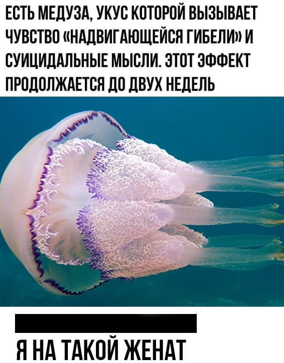 http://s7.uploads.ru/CNsuc.jpg