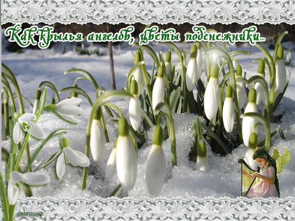 http://s7.uploads.ru/Cidhl.jpg