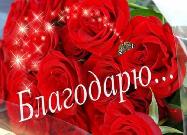 http://s7.uploads.ru/D6Moi.jpg