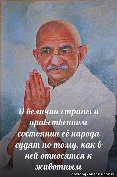 http://s7.uploads.ru/DyYlJ.jpg