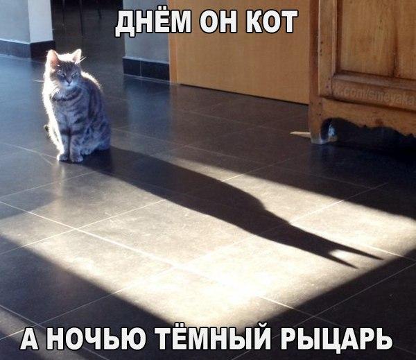 http://s7.uploads.ru/EBoAT.jpg