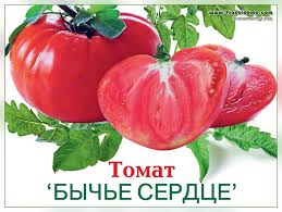 http://s7.uploads.ru/EVlwi.jpg
