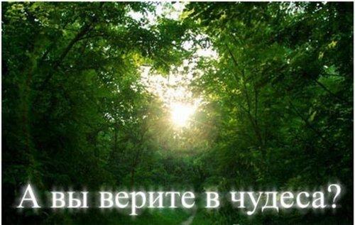 http://s7.uploads.ru/Efyv4.jpg