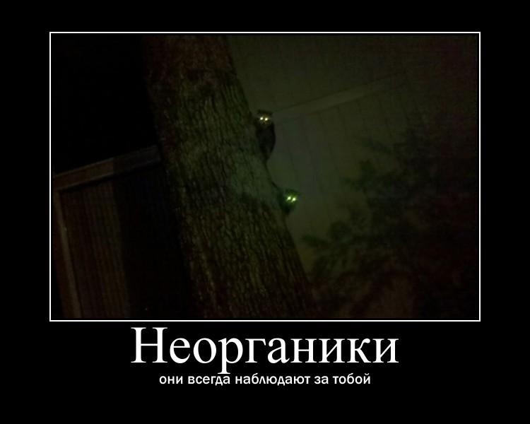 http://s7.uploads.ru/FCsXI.jpg