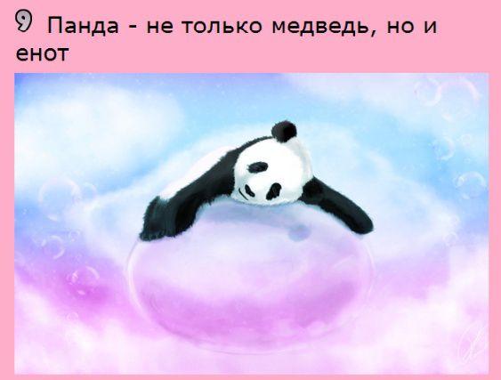 http://s7.uploads.ru/GOg3c.jpg