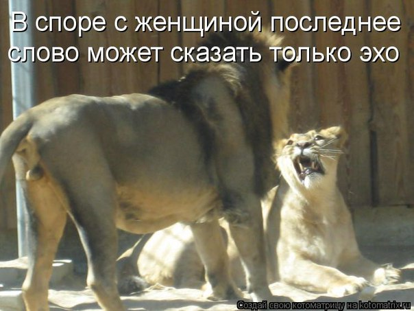 http://s7.uploads.ru/H7j6R.jpg