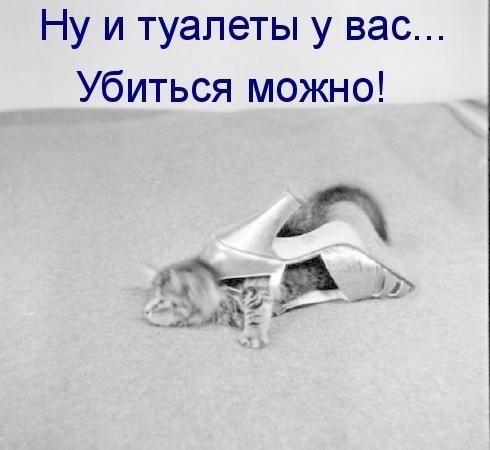 http://s7.uploads.ru/HXj72.jpg