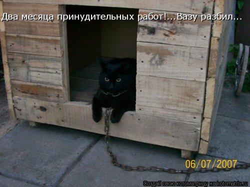 http://s7.uploads.ru/I2vX7.jpg