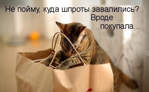 http://s7.uploads.ru/IayVS.jpg