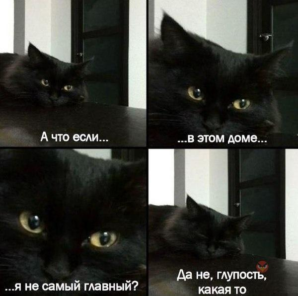 http://s7.uploads.ru/Iy2Qb.jpg
