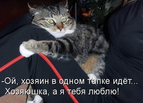 http://s7.uploads.ru/JiUNp.jpg