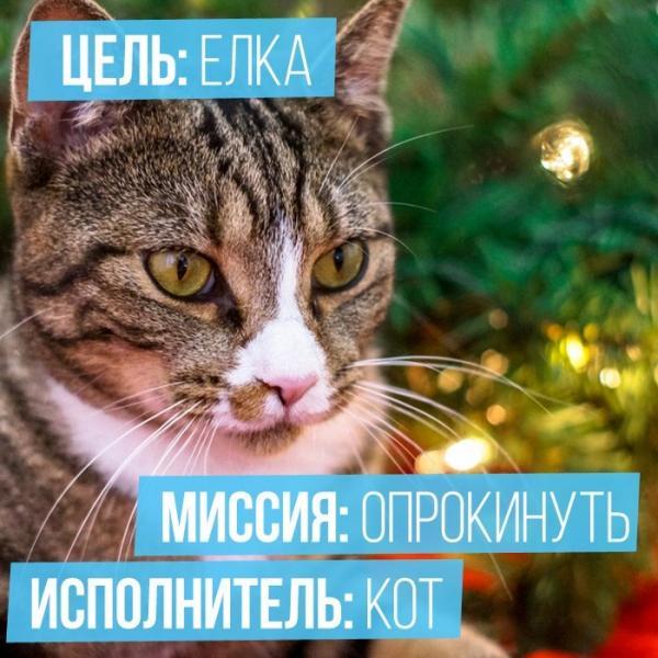 http://s7.uploads.ru/Jrxnh.jpg